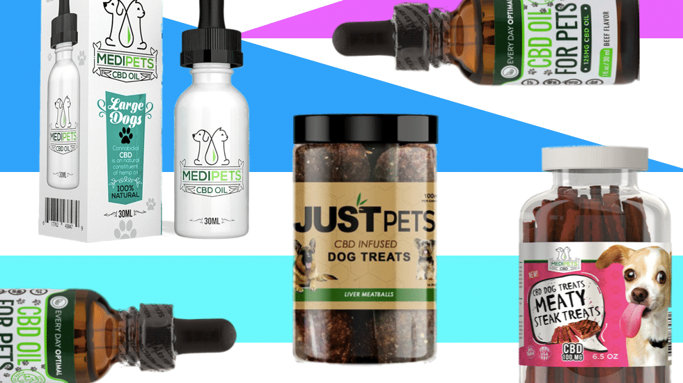 Be Showed To (Do) Cbd Oil For Pet Dogs Like An Expert